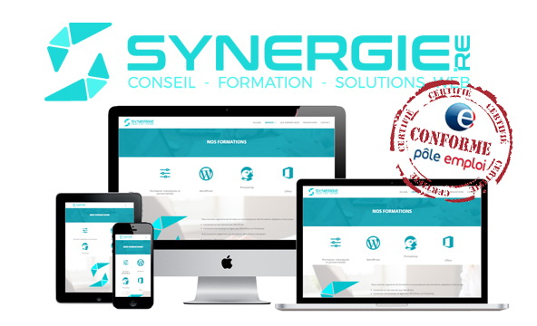 Synergie.reArticleblogCertficiation