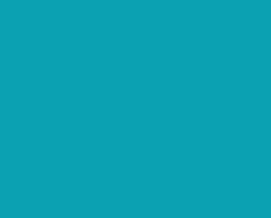 synergie.re-logo-pole-emploi-bleu